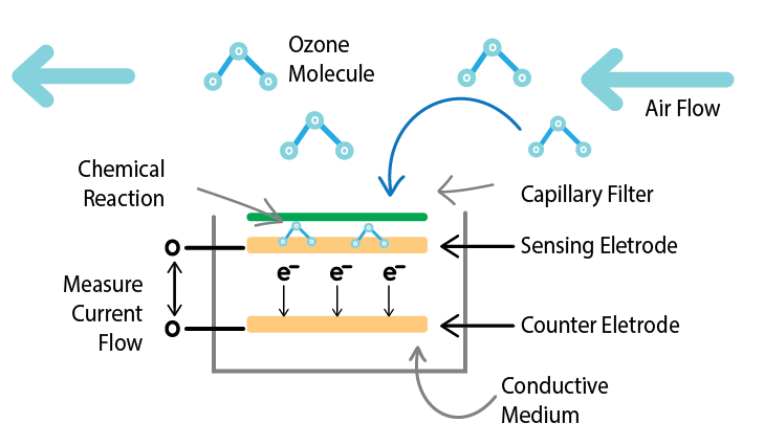 o3 sensor diagram